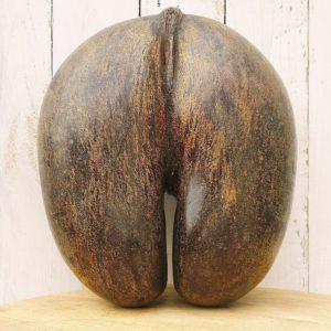 Coco fesse corbeille provenant des Seychelles, travail de marin fin XIXème début XXème. Les bords de la corbeille sont crénelés, le coco fesse n'est pas verni mais belle patine d'usage. Légères traces d'usures. Très bon état général Dimensions : 28x25x14 cm